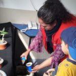 Conociendo el cuidado de las plantas