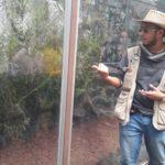Visita Guiada por Rodrigo Arredondo Fernández