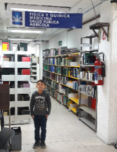 Área de Consulta de Biblioteca