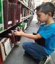 Búsqueda de los libros