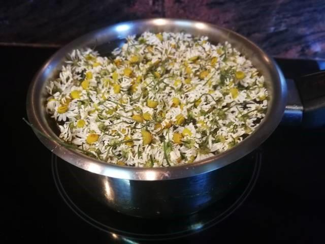 Flor de manzanilla en agua hirviendo