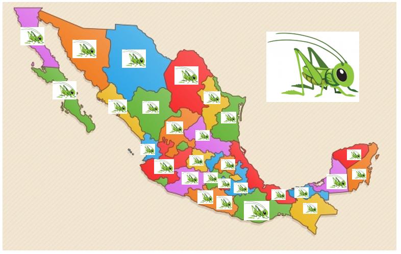 Figura 1. Distribución de las diferentes especies de chapulines en la República Mexicana.