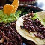 Figura 6. Platillo mexicano con chapulines.